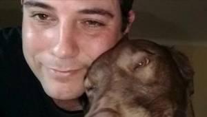 Pelastettu koira tunnisti ensimmäisen omistajansa tuoksun. Tämä reaktio on nähtä