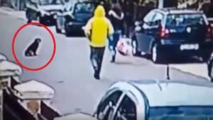 Epäilyttävä mies hyökkäsi naisen kimppuun takaa päin. Video joka näyttää miten k