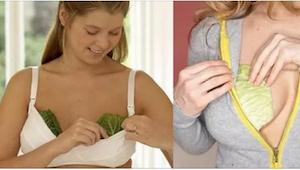 Tiesitkö, että monet naiset käärivät kaalinlehtiä rintojensa ympärille? Se tuo m