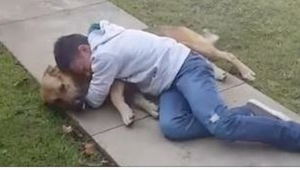 11-vuotiaan pojan koira katosi kahdeksaksi kuukaudeksi. Hänen reaktionsa kun koi