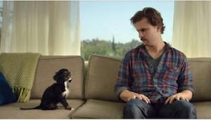 Mies hankki koiranpennun. Se mitä koira tekee hänen palatessaan kotiin sen kanss