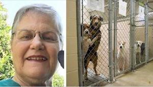 Vanha nainen pyysi eläinten turvakodista itselleen koiraa, mitä kukaan ei halunn